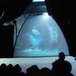 3-IN-1 FILM-THEATER2