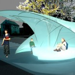 A BUS-STOP THAT GROWS OUT OF A TREE2